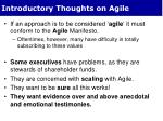 introductory thoughts on agile