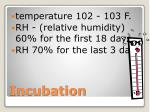 incubation2