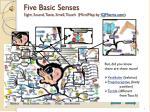 five basic senses sight sound taste smell touch mindmap by iqmatrix com