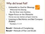 why did israel fail