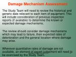 damage mechanism assessment