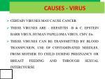 causes virus