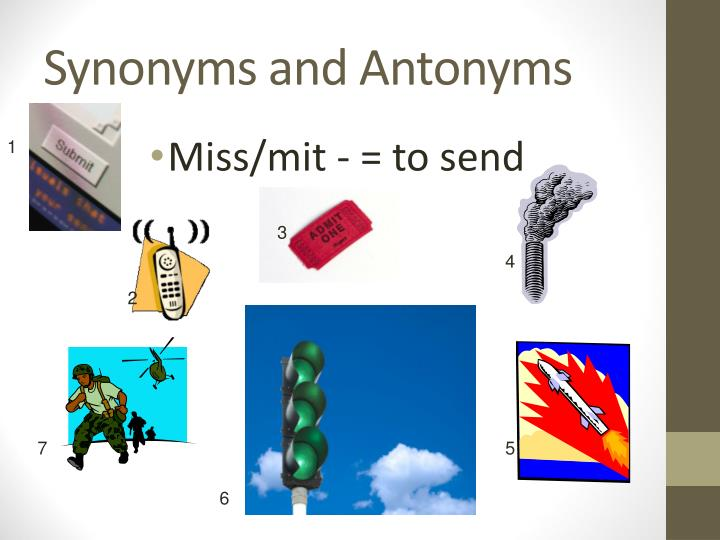 synonyms and antonyms n.