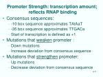 promoter strength transcription amount reflects rnap binding