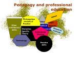 pedagogy and professional education