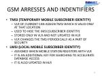 gsm arresses and indentifiers2