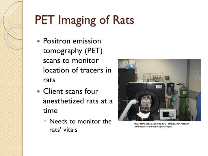 Pet imaging of rats