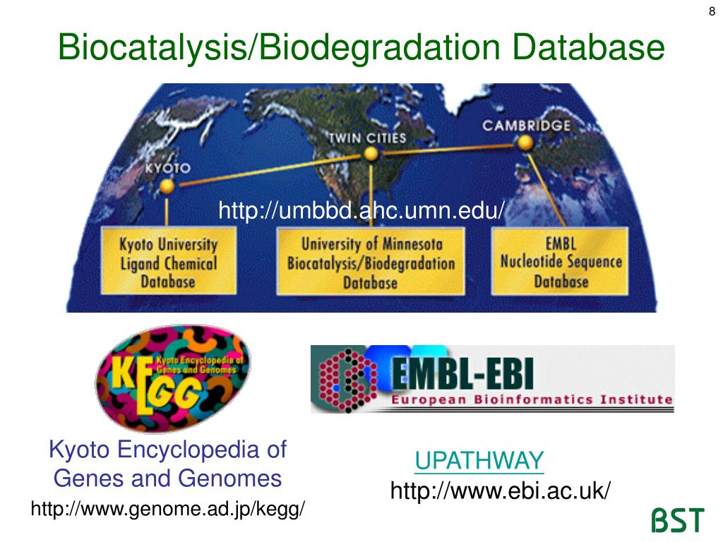 PPT - Microbial Metabolism Databases of Microbial Metabolism