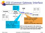 cgi common gateway interface1