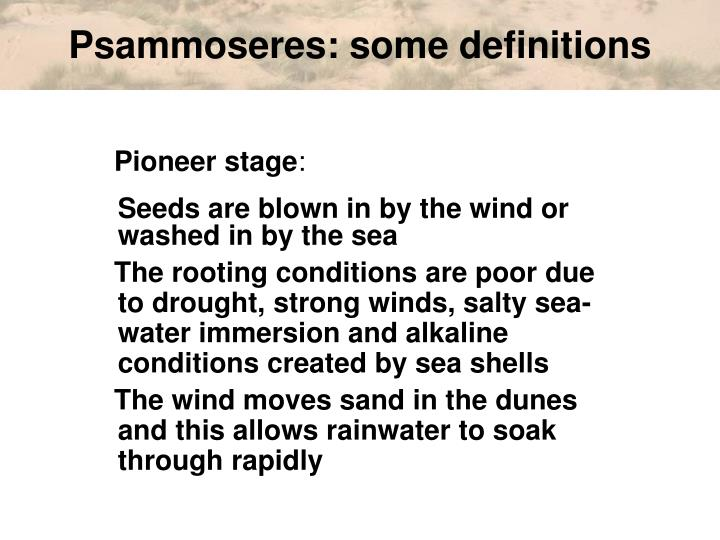 Psammoseres: some definitions