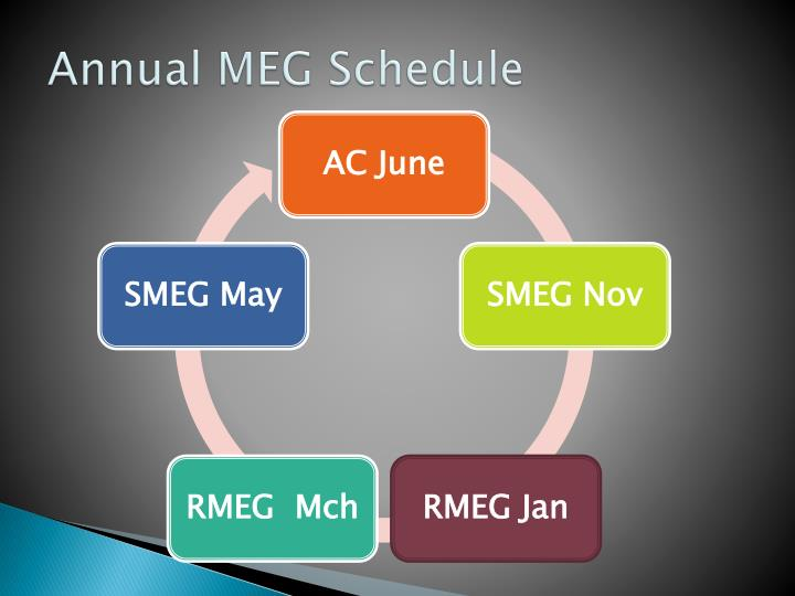 Annual MEG Schedule