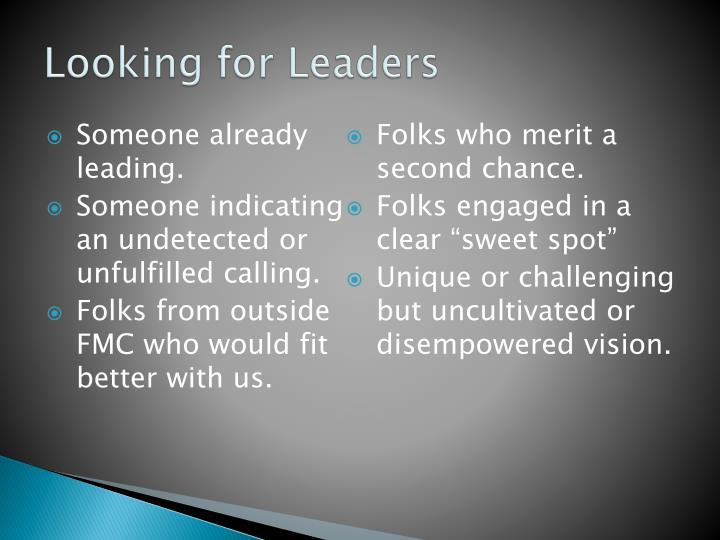 Looking for Leaders