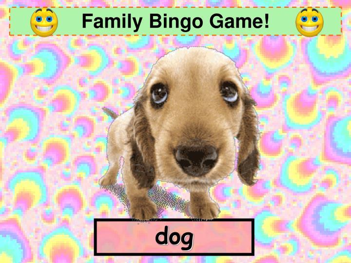 Family Bingo Game!
