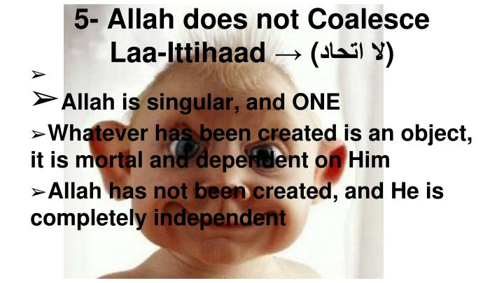 Allah is singular, and ONE