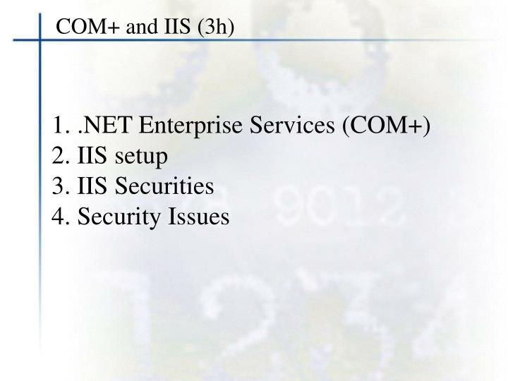 COM+ and IIS (3h)