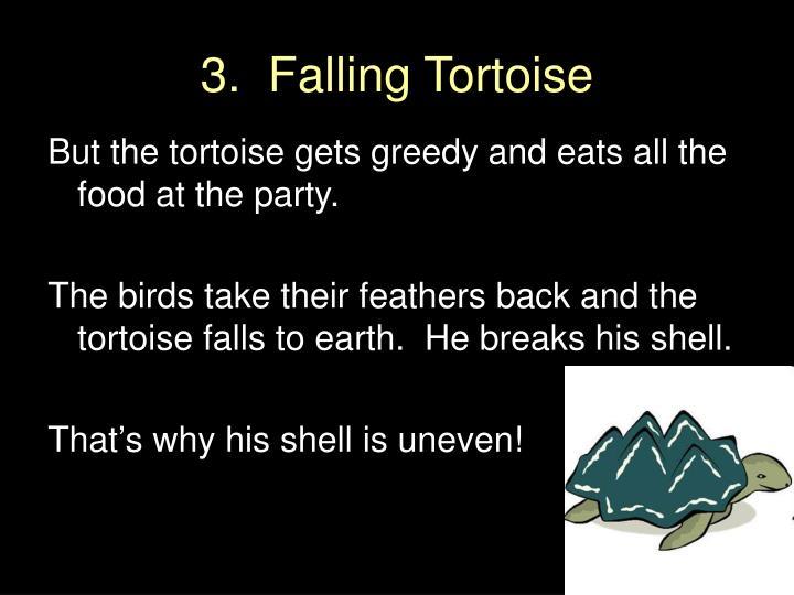 Falling Tortoise