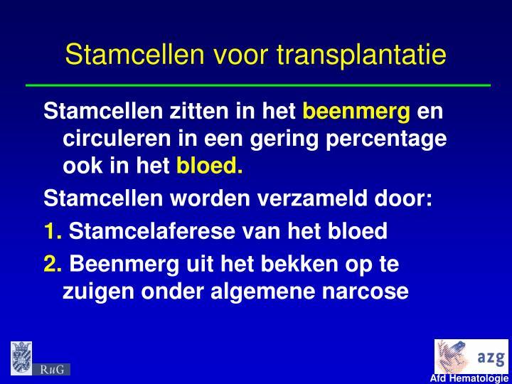 Stamcellen voor transplantatie