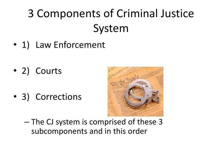 3 Components of Criminal Justice System