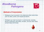 bloodborne pathogens12