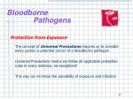 bloodborne pathogens15