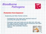 bloodborne pathogens17
