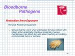 bloodborne pathogens18