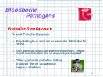 bloodborne pathogens19