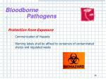 bloodborne pathogens24