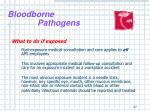 bloodborne pathogens25