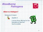 bloodborne pathogens8