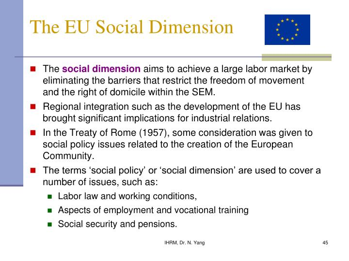 The EU Social Dimension