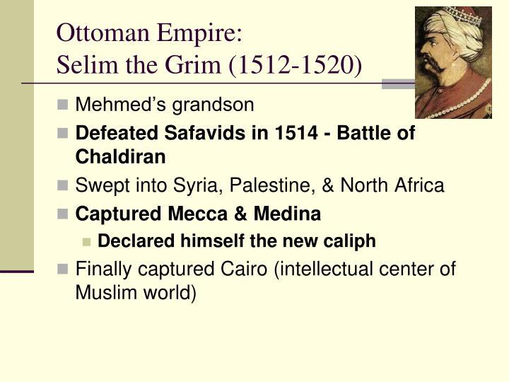 selim the grim accomplishments