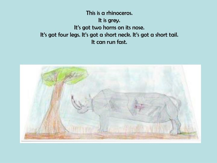 This is a rhinoceros.
