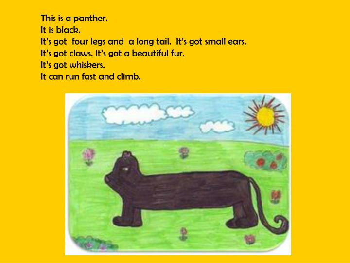 This is a panther.