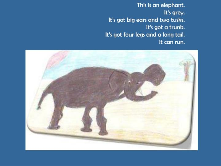 This is an elephant.