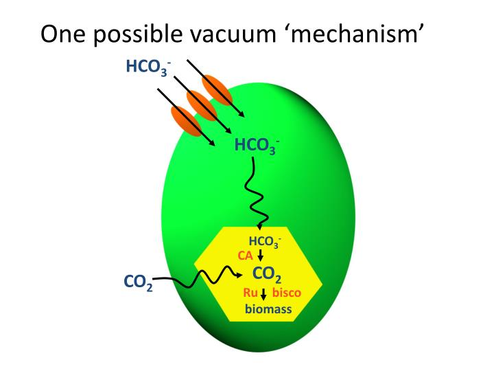 One possible vacuum 'mechanism'