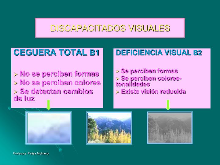 DISCAPACITADOS VISUALES