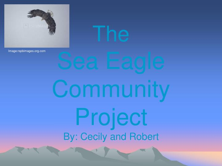 the sea eagle community project by cecily and robert