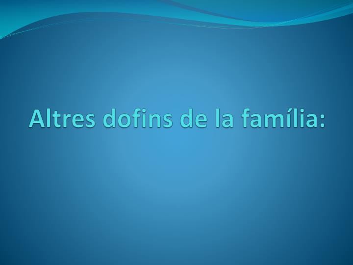 Altres dofins de la família:
