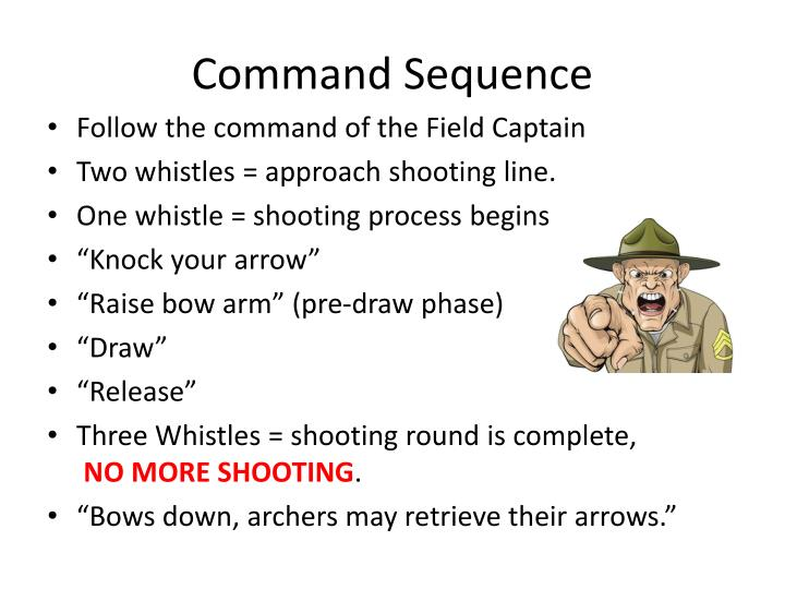 Command Sequence