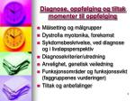 diagnose oppf lging og tiltak momenter til oppf lging