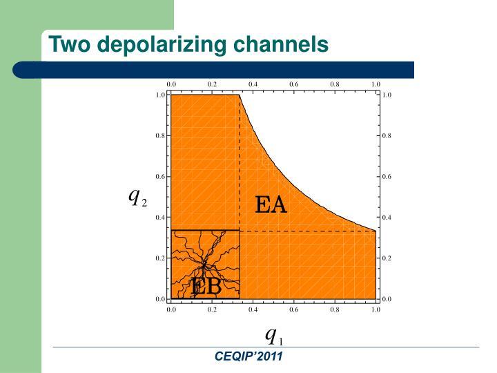 Two depolarizing channels