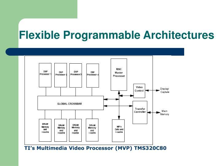Flexible Programmable Architectures
