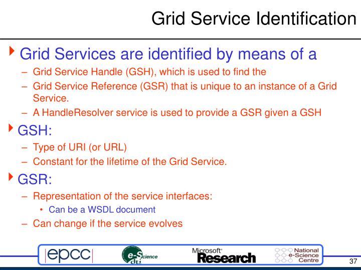 Grid Service Identification