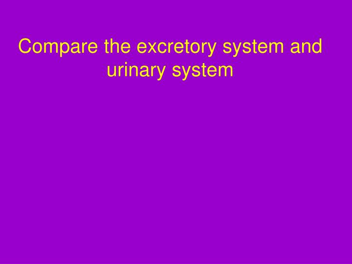 Compare the excretory system and urinary system