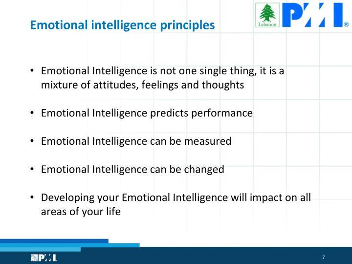 Emotional intelligence principles