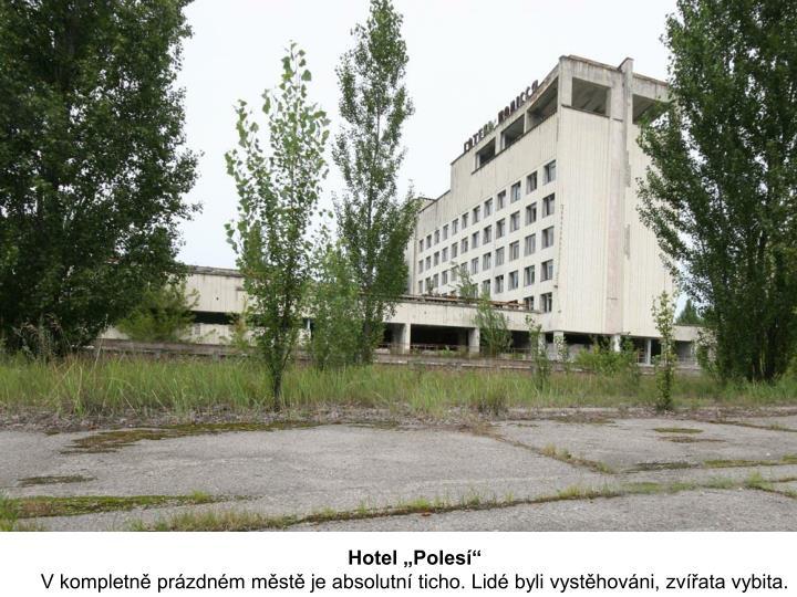 """Hotel """"Polesí"""""""