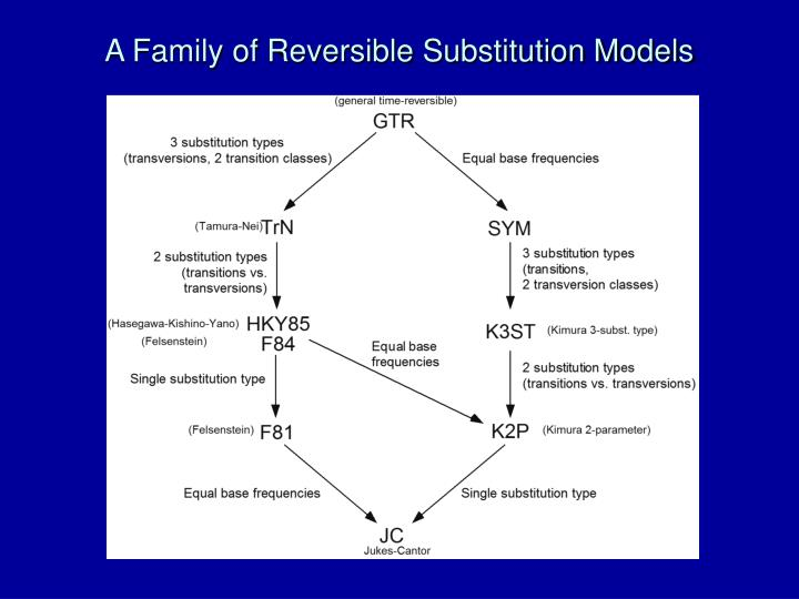 A Family of Reversible Substitution Models