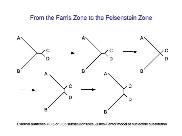 From the Farris Zone to the Felsenstein Zone