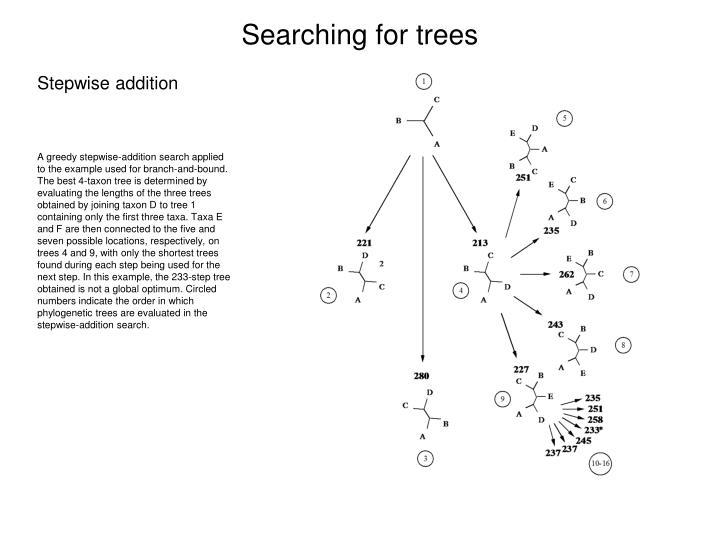 Searching for trees